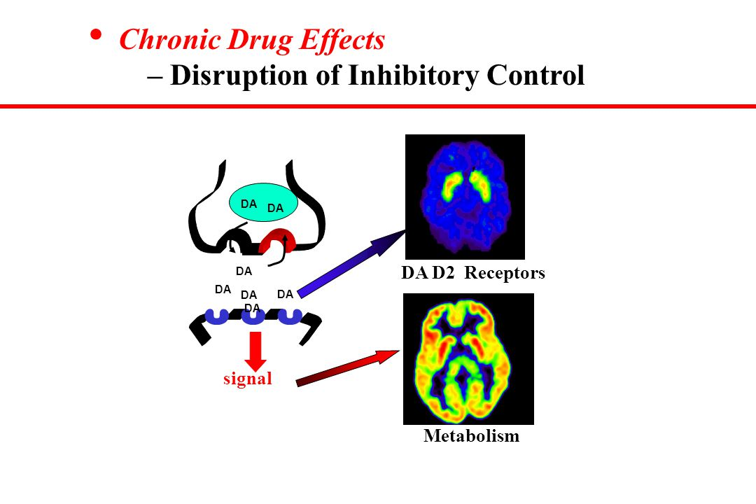 Chronic Drug Effects – Disruption of Inhibitory Control DA signal DA D2 Receptors Metabolism