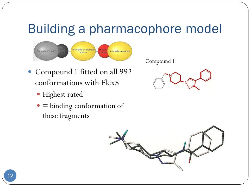 Building a pharmacophore model 12 Compound 1 fitted on all 992 conformations with FlexS Highest rated = binding conformation of these fragments Compound 1
