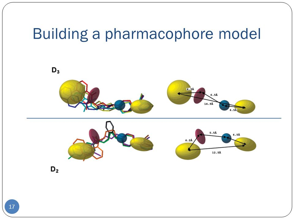 Building a pharmacophore model 17