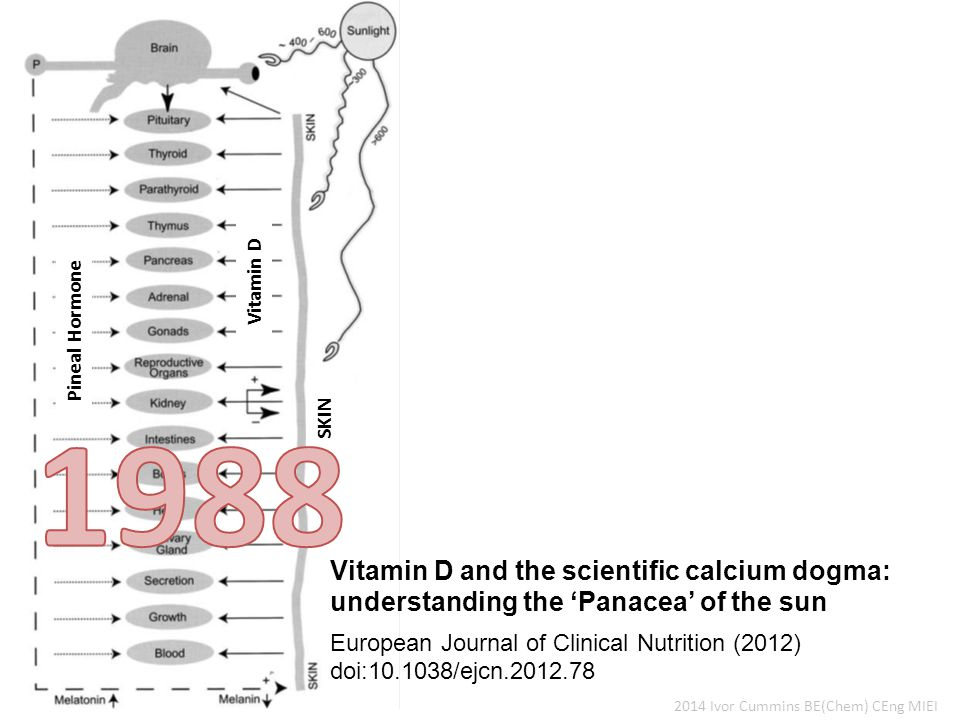 2014 Ivor Cummins BE(Chem) CEng MIEI Vitamin D and the scientific calcium dogma: understanding the 'Panacea' of the sun European Journal of Clinical Nutrition (2012) doi:10.1038/ejcn.2012.78 Pineal Hormone Vitamin D SKIN