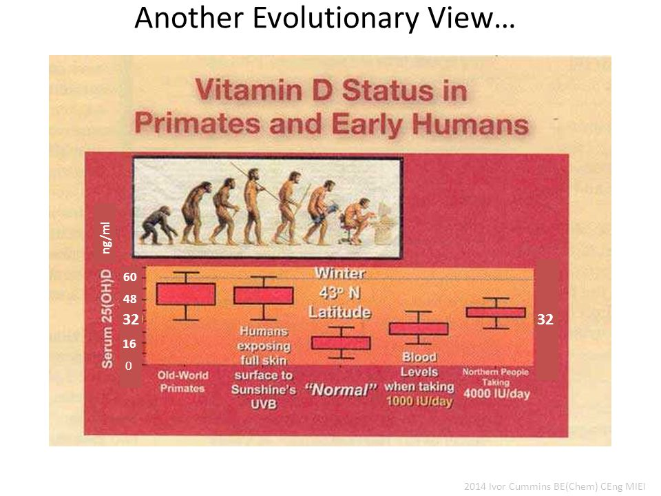 Another Evolutionary View… 2014 Ivor Cummins BE(Chem) CEng MIEI 0 16 32 48 60 32 ng/ml
