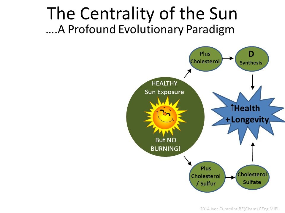 The Centrality of the Sun 2014 Ivor Cummins BE(Chem) CEng MIEI ….A Profound Evolutionary Paradigm HEALTHY Sun Exposure But NO BURNING.