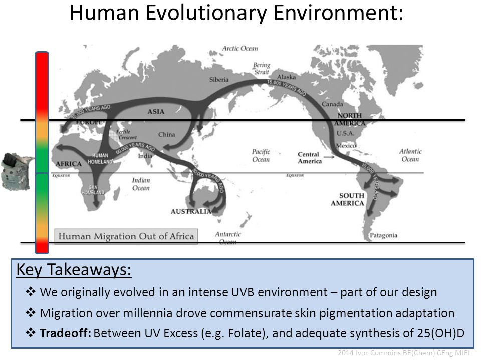 Human Evolutionary Environment: Assmann G, Schulte H.