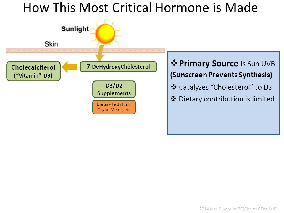 2014 Ivor Cummins BE(Chem) CEng MIEI How This Most Critical Hormone is Made 7 DeHydroxyCholesterol D3/D2 Supplements Cholecalciferol ( Vitamin D3)  Dietary contribution is limited  Primary Source is Sun UVB  Catalyzes Cholesterol to D 3 (Sunscreen Prevents Synthesis) Dietary Fatty Fish, Organ Meats, etc