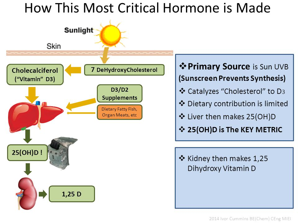 How This Most Critical Hormone is Made 7 DeHydroxyCholesterol D3/D2 Supplements Cholecalciferol ( Vitamin D3) Dietary Fatty Fish, Organ Meats, etc 25(OH)D .