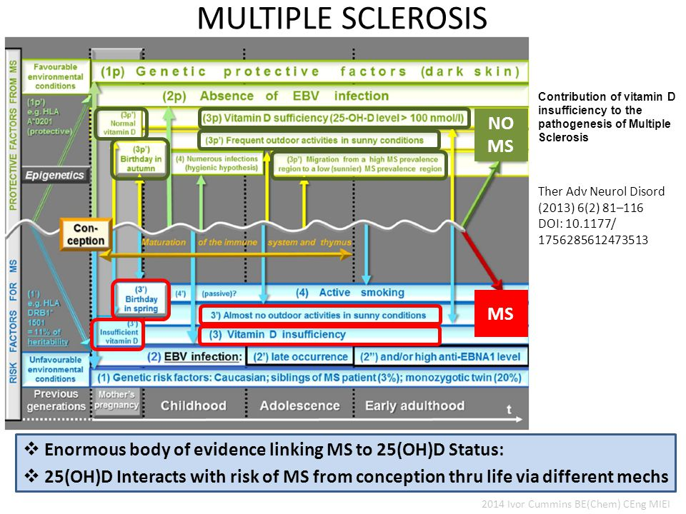  Enormous body of evidence linking MS to 25(OH)D Status: MULTIPLE SCLEROSIS 2014 Ivor Cummins BE(Chem) CEng MIEI  25(OH)D Interacts with risk of MS from conception thru life via different mechs Contribution of vitamin D insufficiency to the pathogenesis of Multiple Sclerosis Ther Adv Neurol Disord (2013) 6(2) 81–116 DOI: 10.1177/ 1756285612473513 NO MS