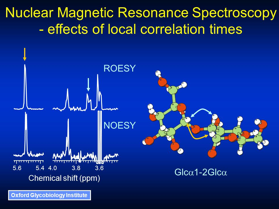 Oxford Glycobiology Institute Nuclear Magnetic Resonance Spectroscopy - effects of local correlation times Glc  1-2Glc  5.44.03.83.65.6 Chemical shift (ppm) NOESY ROESY