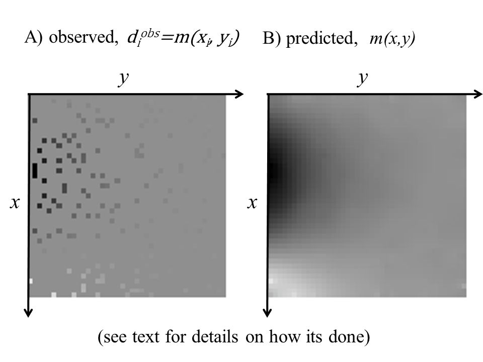 y x A) observed, d i obs =m(x i, y i ) y x B) predicted, m(x,y) (see text for details on how its done)