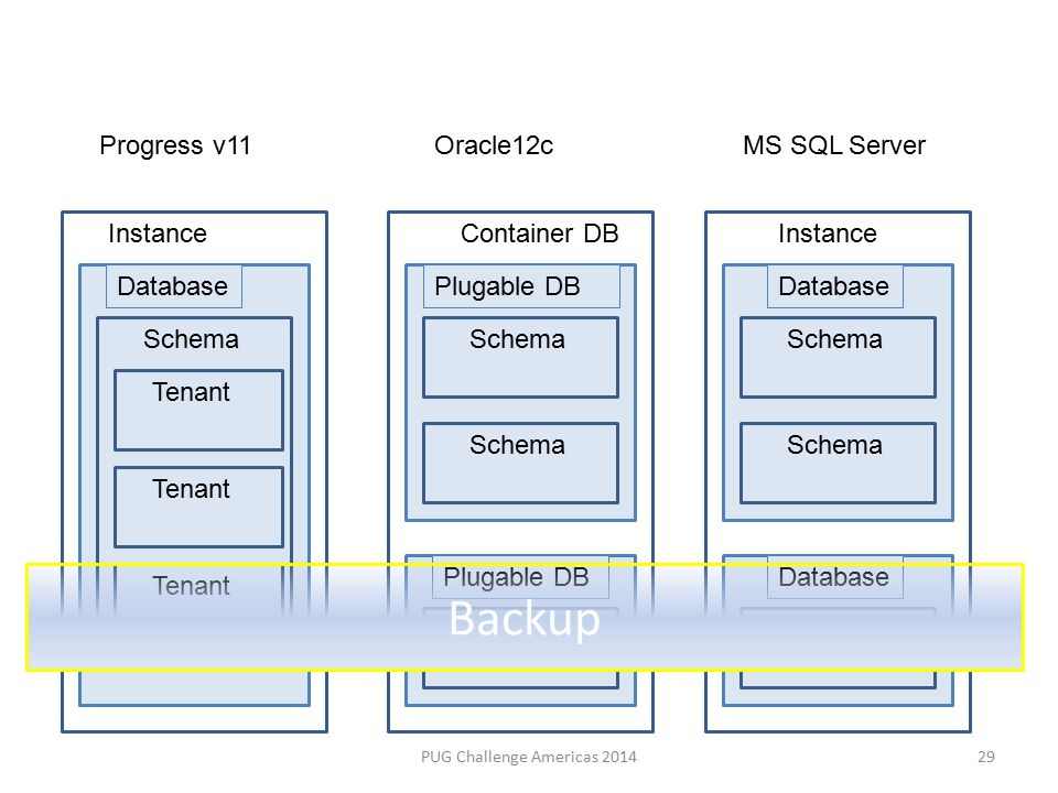 PUG Challenge Americas 2014 Progress v11Oracle12cMS SQL Server InstanceContainer DBInstance Database Schema Plugable DB Schema Tenant Backup 29