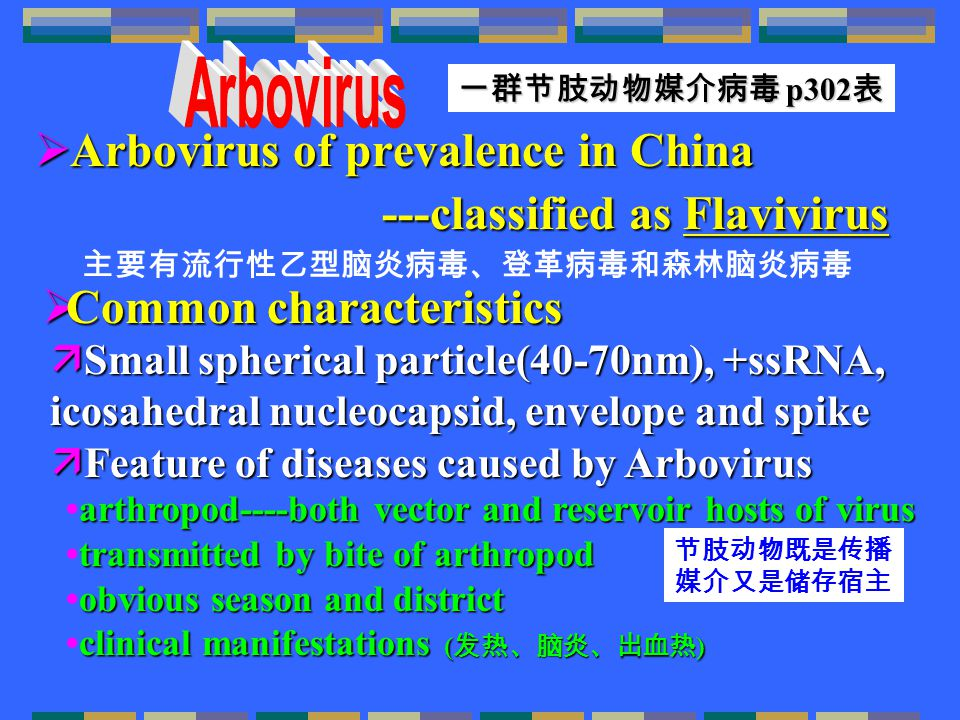  Arbovirus of prevalence in China ---classified as Flavivirus ---classified as Flavivirus  Small spherical particle(40-70nm), +ssRNA, icosahedral nucleocapsid, envelope and spike  Feature of diseases caused by Arbovirus 主要有流行性乙型脑炎病毒、登革病毒和森林脑炎病毒 一群节肢动物媒介病毒 p302 表 arthropod----both vector and reservoir hosts of virus transmitted by bite of arthropod obvious season and district clinical manifestations ( 发热、脑炎、出血热 )arthropod----both vector and reservoir hosts of virustransmitted by bite of arthropodobvious season and districtclinical manifestations ( 发热、脑炎、出血热 ) 节肢动物既是传播 媒介又是储存宿主  Common characteristics