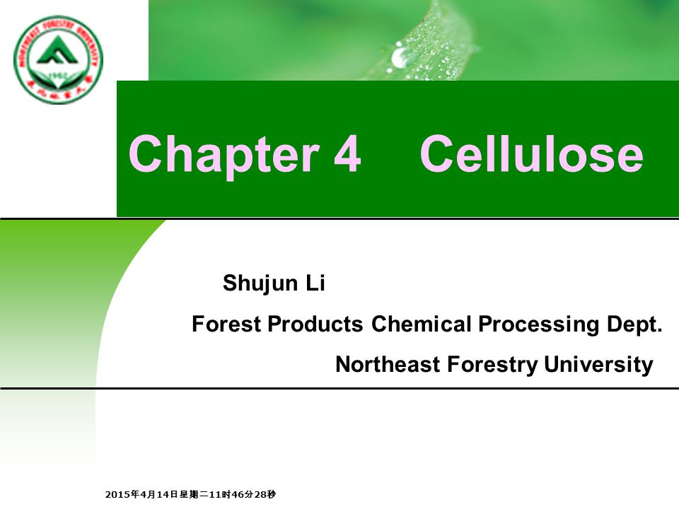 Chapter 4 Cellulose Shujun Li Forest Products Chemical Processing Dept.