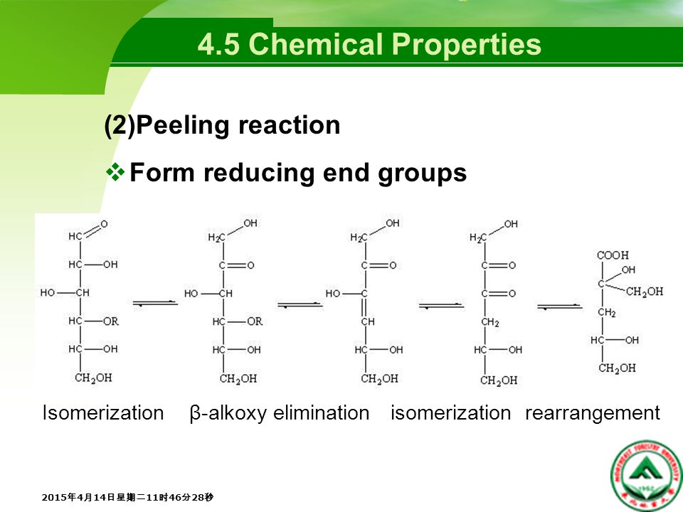 4.5 Chemical Properties (2)Peeling reaction  Form reducing end groups 2015年4月14日星期二11时48分5秒 2015年4月14日星期二11时48分5秒 2015年4月14日星期二11时48分5秒 2015年4月14日星期二11时48分5秒 2015年4月14日星期二11时48分5秒 2015年4月14日星期二11时48分5秒 Isomerization β-alkoxy elimination isomerization rearrangement