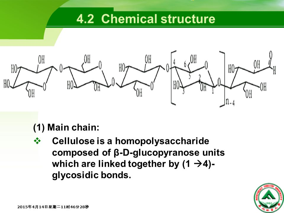 (1) Main chain:  Cellulose is a homopolysaccharide composed of β-D-glucopyranose units which are linked together by (1  4)- glycosidic bonds.