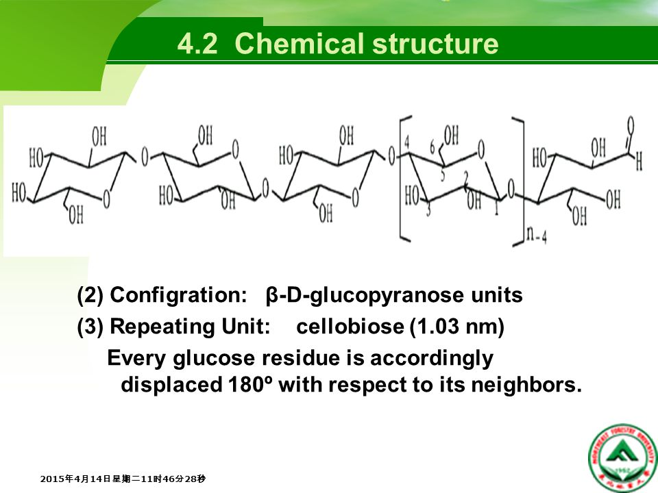 (2) Configration: β-D-glucopyranose units (3) Repeating Unit: cellobiose (1.03 nm) Every glucose residue is accordingly displaced 180º with respect to its neighbors.