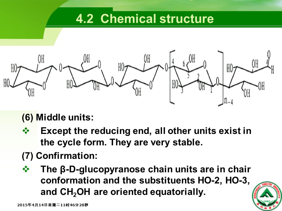 4.2 Chemical structure (6) Middle units:  Except the reducing end, all other units exist in the cycle form.
