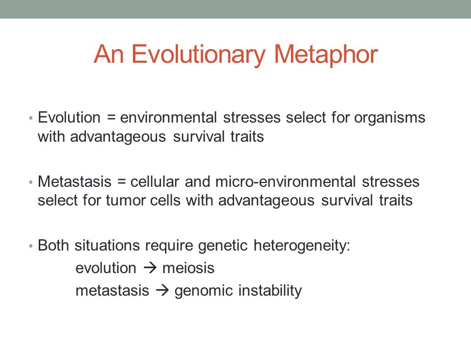 An Evolutionary Metaphor Evolution = environmental stresses select for organisms with advantageous survival traits Metastasis = cellular and micro-environmental stresses select for tumor cells with advantageous survival traits Both situations require genetic heterogeneity: evolution  meiosis metastasis  genomic instability