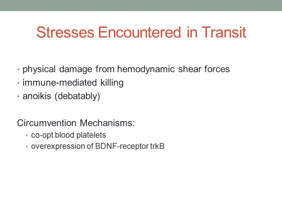 Stresses Encountered in Transit physical damage from hemodynamic shear forces immune-mediated killing anoikis (debatably) Circumvention Mechanisms: co-opt blood platelets overexpression of BDNF-receptor trkB