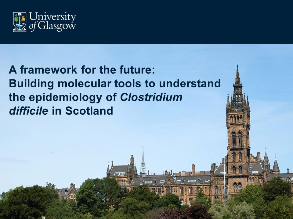A framework for the future: Building molecular tools to understand the epidemiology of Clostridium difficile in Scotland