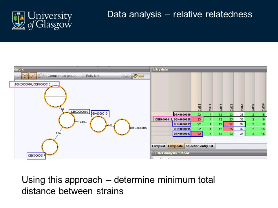 Data analysis – relative relatedness Using this approach – determine minimum total distance between strains