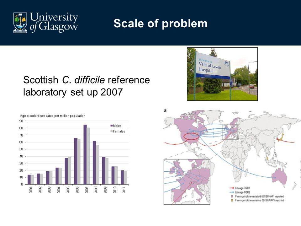 Scale of problem Scottish C. difficile reference laboratory set up 2007