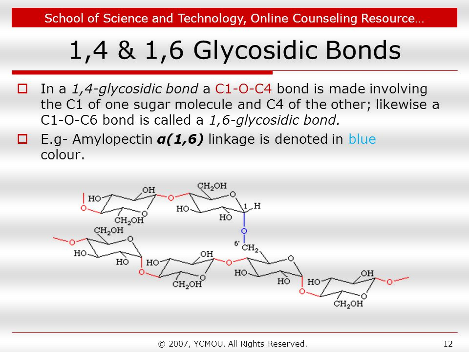 School of Science and Technology, Online Counseling Resource… 1,4 & 1,6 Glycosidic Bonds  In a 1,4-glycosidic bond a C1-O-C4 bond is made involving the C1 of one sugar molecule and C4 of the other; likewise a C1-O-C6 bond is called a 1,6-glycosidic bond.
