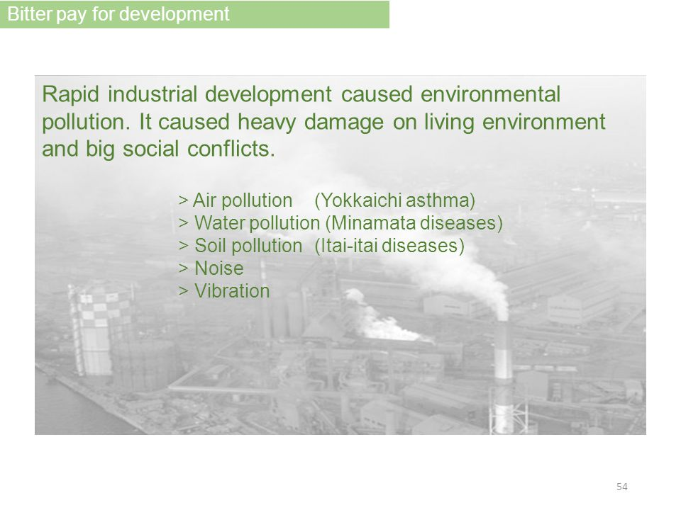 Rapid industrial development caused environmental pollution.