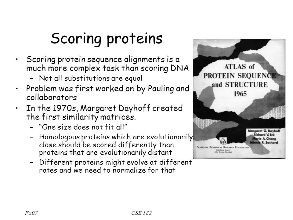Fa07CSE 182 Scoring proteins Scoring protein sequence alignments is a much more complex task than scoring DNA –Not all substitutions are equal Problem was first worked on by Pauling and collaborators In the 1970s, Margaret Dayhoff created the first similarity matrices.