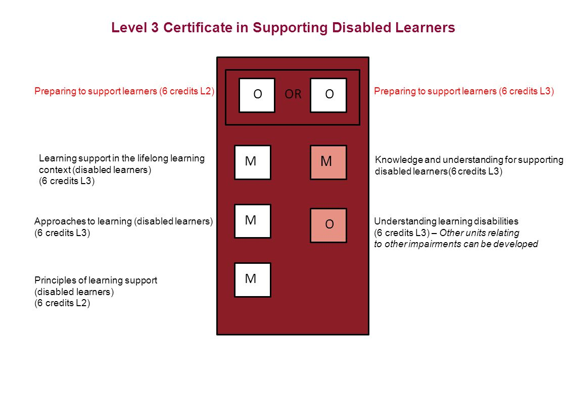 Level 3 Certificate in Supporting Disabled Learners OR M M M OO O M Preparing to support learners (6 credits L2)Preparing to support learners (6 credits L3) Learning support in the lifelong learning context (disabled learners) (6 credits L3) Approaches to learning (disabled learners) (6 credits L3) Principles of learning support (disabled learners) (6 credits L2) Understanding learning disabilities (6 credits L3) – Other units relating to other impairments can be developed Knowledge and understanding for supporting disabled learners(6 credits L3)