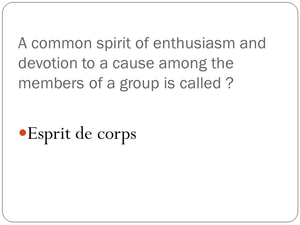 A common spirit of enthusiasm and devotion to a cause among the members of a group is called .