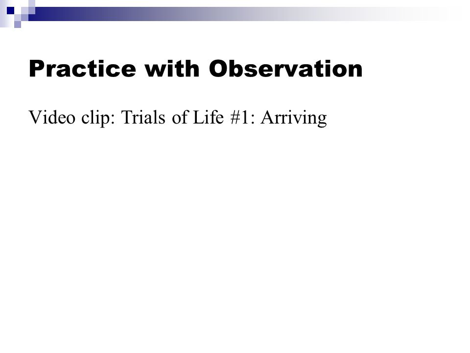 Practice with Observation Video clip: Trials of Life #1: Arriving