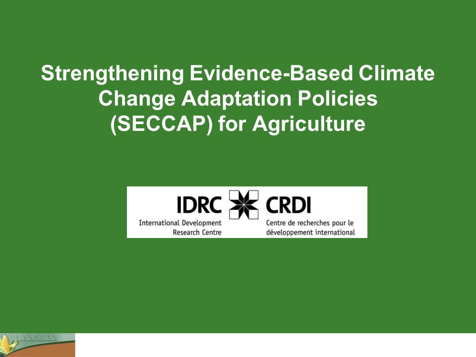 Strengthening Evidence-Based Climate Change Adaptation Policies (SECCAP) for Agriculture