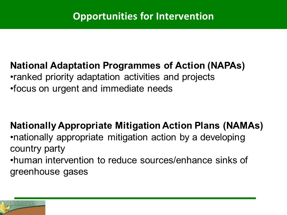 Opportunities for Intervention National Adaptation Programmes of Action (NAPAs) ranked priority adaptation activities and projects focus on urgent and immediate needs Nationally Appropriate Mitigation Action Plans (NAMAs) nationally appropriate mitigation action by a developing country party human intervention to reduce sources/enhance sinks of greenhouse gases