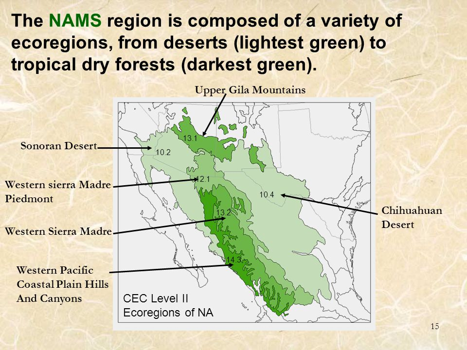 15 CEC Level II Ecoregions of NA 10.4 10.2 13.1 13.2 12.1 14.3 The NAMS region is composed of a variety of ecoregions, from deserts (lightest green) to tropical dry forests (darkest green).