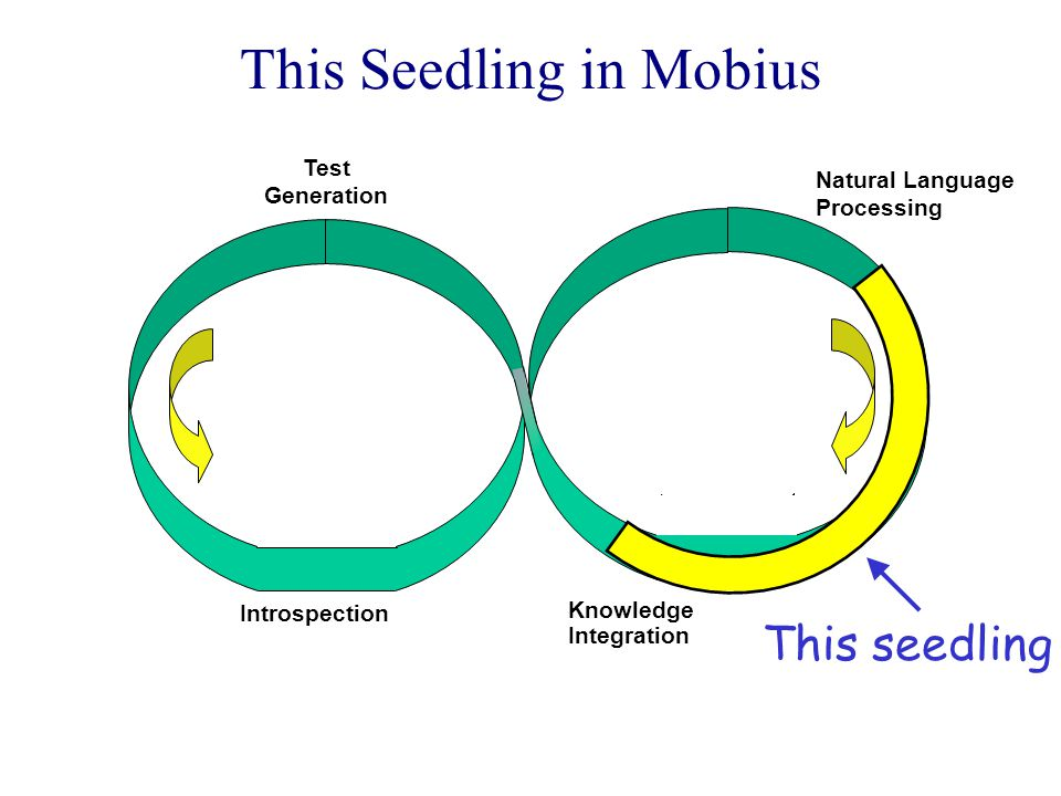 This Seedling in Mobius Knowledge Integration Introspection Natural Language Processing Test Generation This seedling