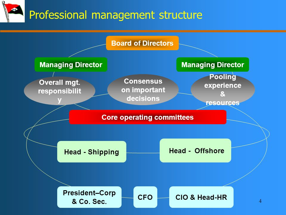4 Professional management structure Board of Directors Managing Director Core operating committees Overall mgt.