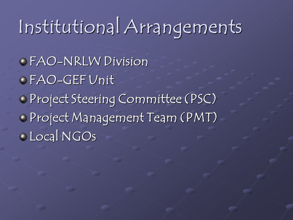 Institutional Arrangements FAO-NRLW Division FAO-GEF Unit Project Steering Committee (PSC) Project Management Team (PMT) Local NGOs
