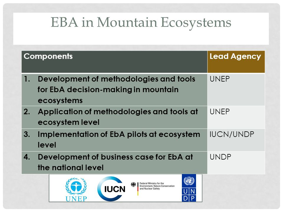ComponentsLead Agency 1.Development of methodologies and tools for EbA decision-making in mountain ecosystems UNEP 2.Application of methodologies and tools at ecosystem level UNEP 3.Implementation of EbA pilots at ecosystem level IUCN/UNDP 4.Development of business case for EbA at the national level UNDP EBA in Mountain Ecosystems