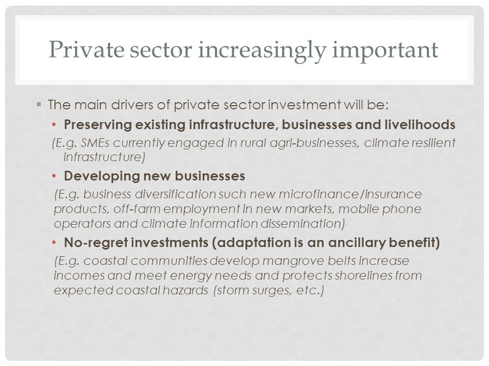 Private sector increasingly important  The main drivers of private sector investment will be: Preserving existing infrastructure, businesses and livelihoods (E.g.