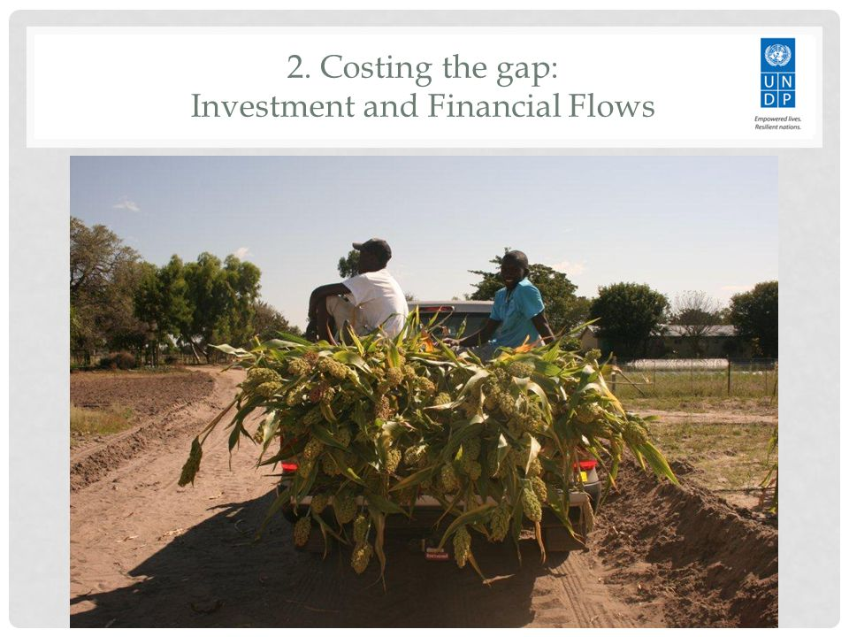 2. Costing the gap: Investment and Financial Flows