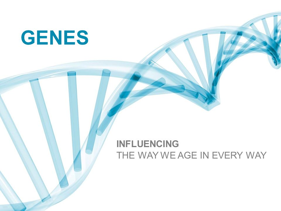 GENES INFLUENCING THE WAY WE AGE IN EVERY WAY