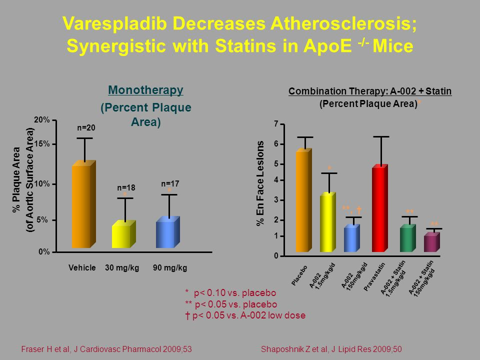 Varespladib Decreases Atherosclerosis; Synergistic with Statins in ApoE -/- Mice Monotherapy (Percent Plaque Area) 0% 5% 10% 15% 20% % Plaque Area (of Aortic Surface Area) % En Face Lesions Vehicle30 mg/kg90 mg/kg n=20 n=18 n=17 * * * p< 0.10 vs.