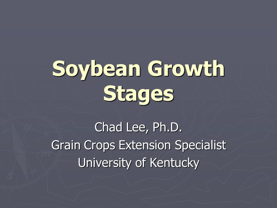 Soybean Growth Stages Chad Lee, Ph.D. Grain Crops Extension Specialist University of Kentucky