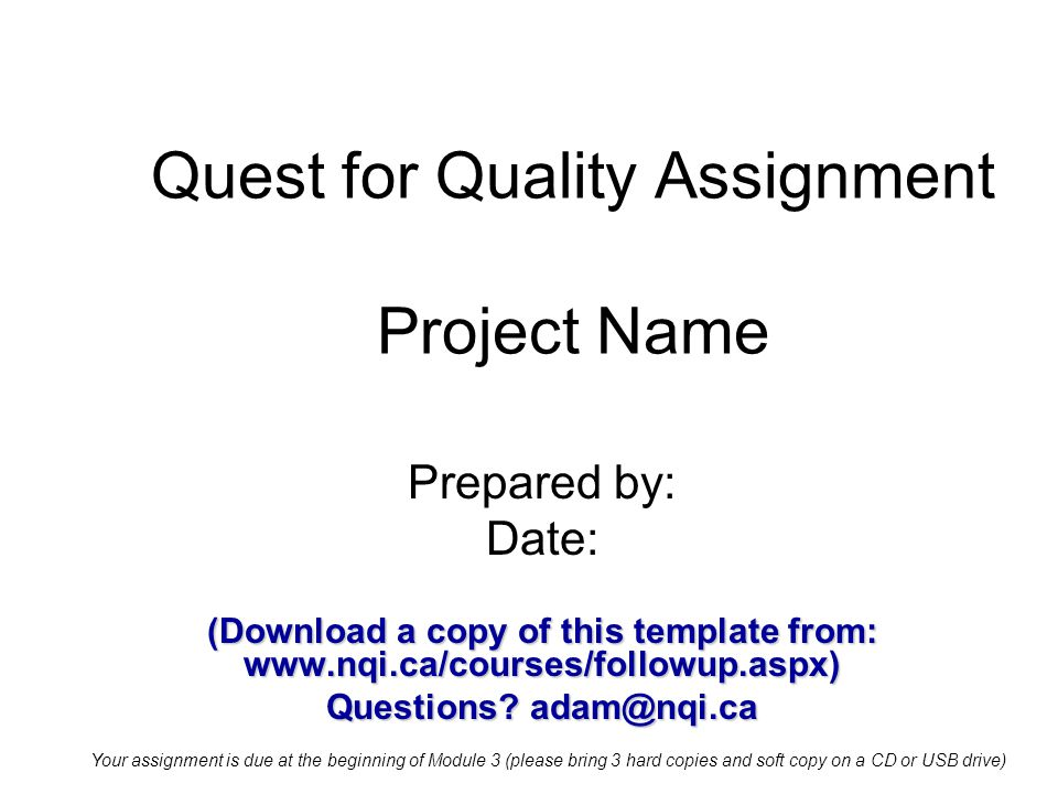 Quest for Quality Assignment Project Name Prepared by: Date: (Download a copy of this template from: www.nqi.ca/courses/followup.aspx) Questions.