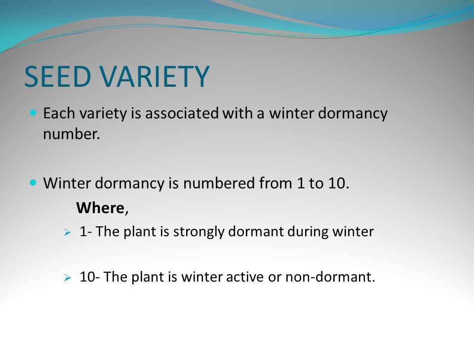 SEED VARIETY Each variety is associated with a winter dormancy number.