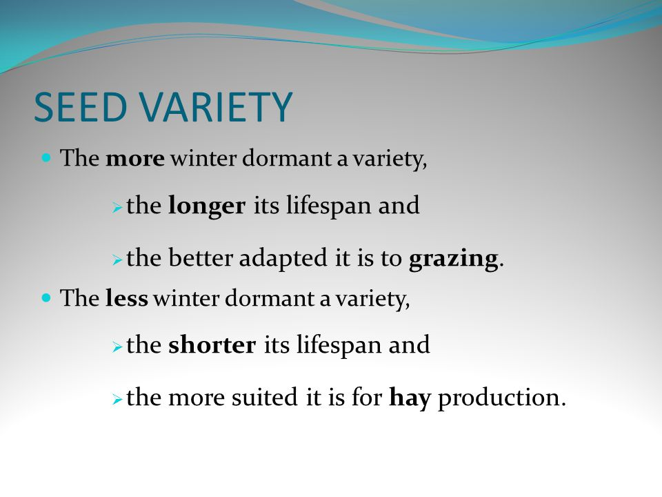 SEED VARIETY The more winter dormant a variety,  the longer its lifespan and  the better adapted it is to grazing.