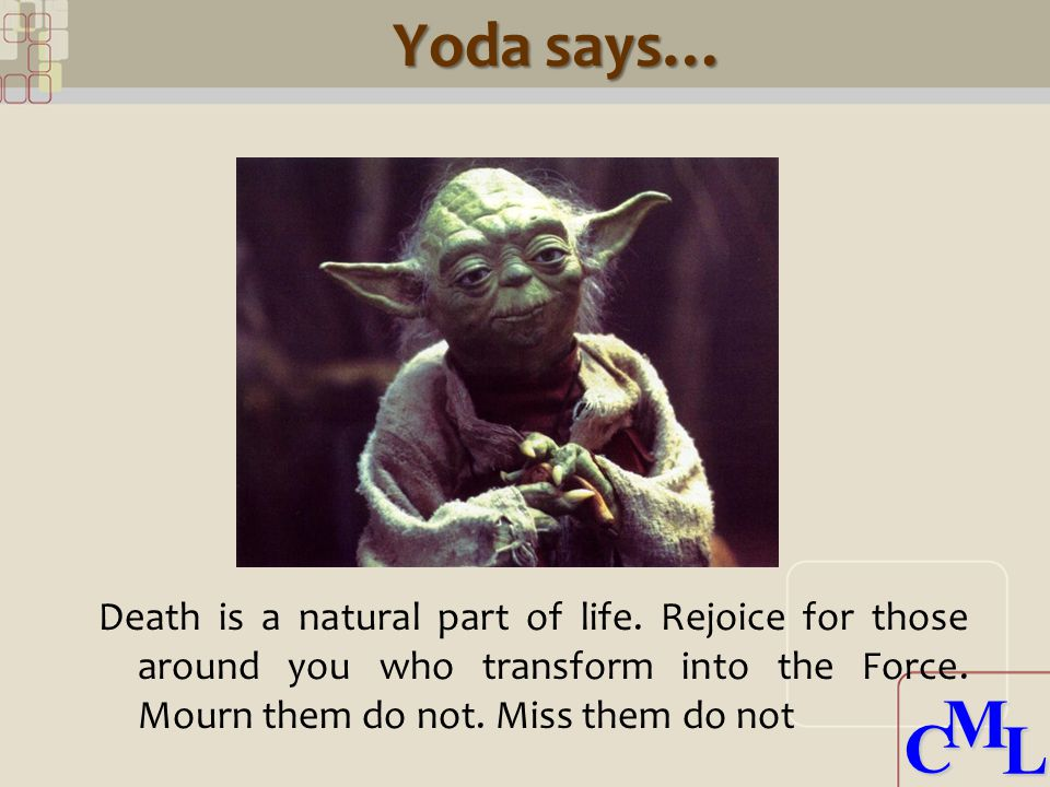 CML CML Yoda says… Death is a natural part of life.