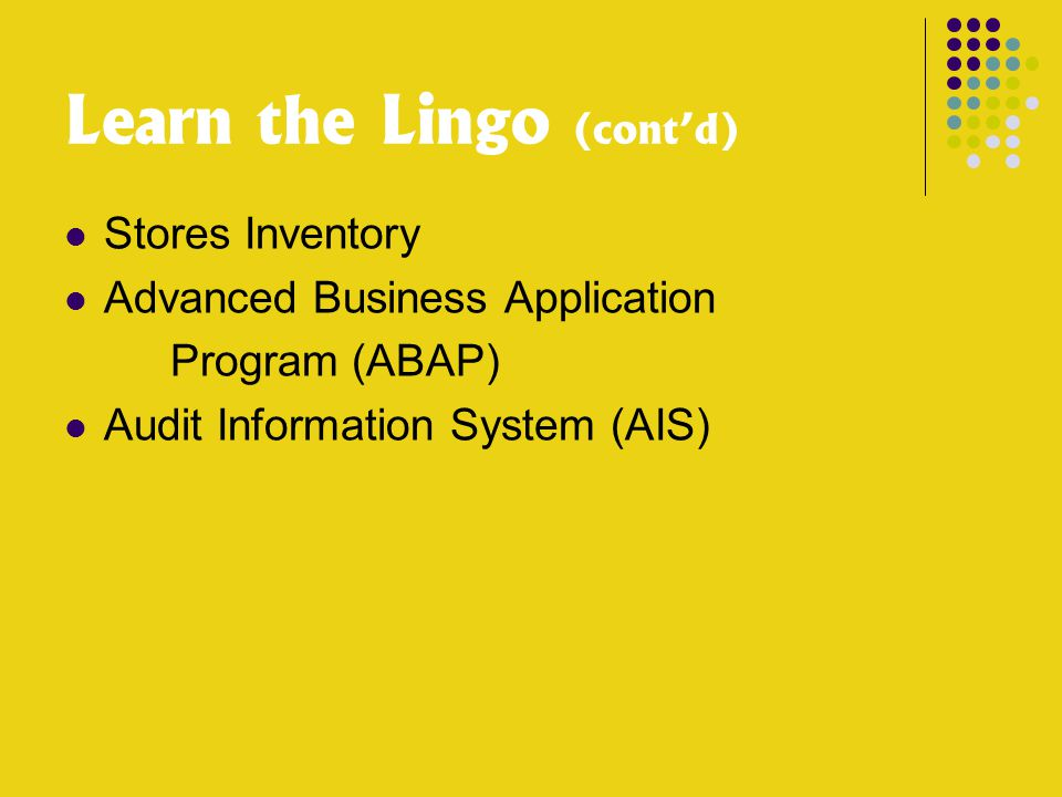 Learn the Lingo (cont'd) Stores Inventory Advanced Business Application Program (ABAP) Audit Information System (AIS)