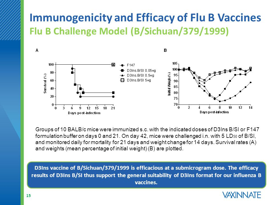 Immunogenicity and Efficacy of Flu B Vaccines Flu B Challenge Model (B/Sichuan/379/1999) D3Ins vaccine of B/Sichuan/379/1999 is efficacious at a submicrogram dose.