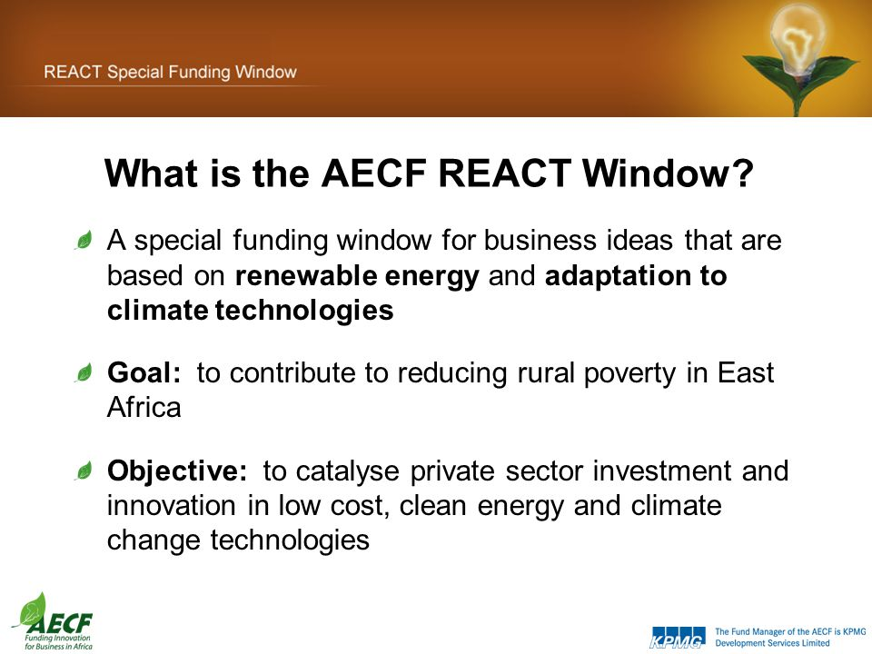 What is the AECF REACT Window.