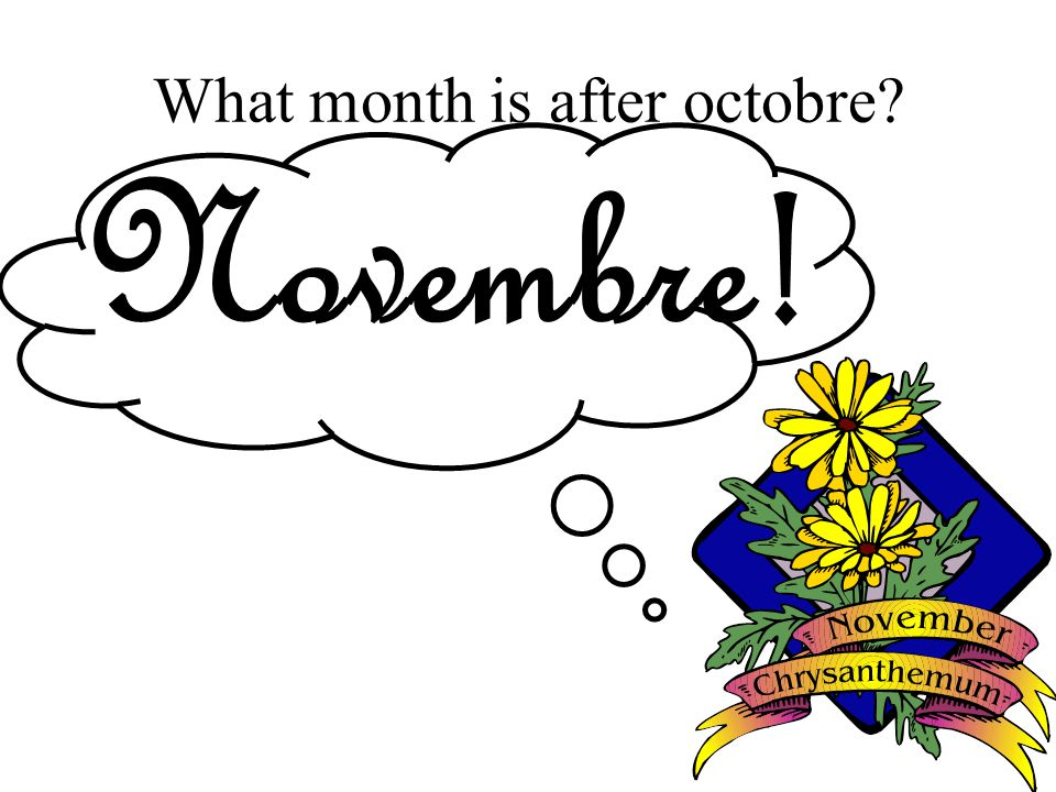 What month is after octobre Novembre!